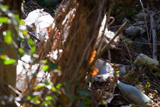 Alles schon ein bisschen älterer Müll, der da gerade wieder ans Licht kommt. Foto: Michael Billig