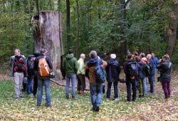 NABU-Exkursion mit Stadträten am 19. Oktober. Foto: NABU Leipzig