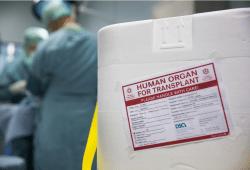 Seit 25 Jahren werden am Universitätsklinikum Leipzig Organe transplantiert. Foto: Stefan Straube/UKL