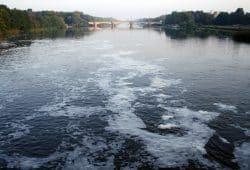 Hochgradig verschmutzt: die Weiße Elster. Foto: Ralf Julke