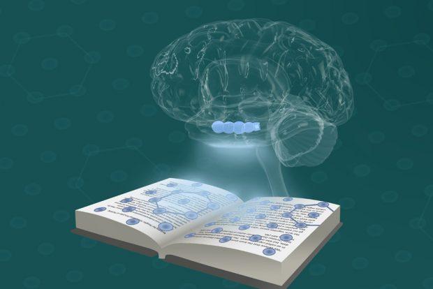 Die Wissenschaftler um Christian Doeller kombinierten ihre Ergebnisse zu einem Modell des Denkens. Foto: Ella Maru Studio & MPI CBS | Doellerlab