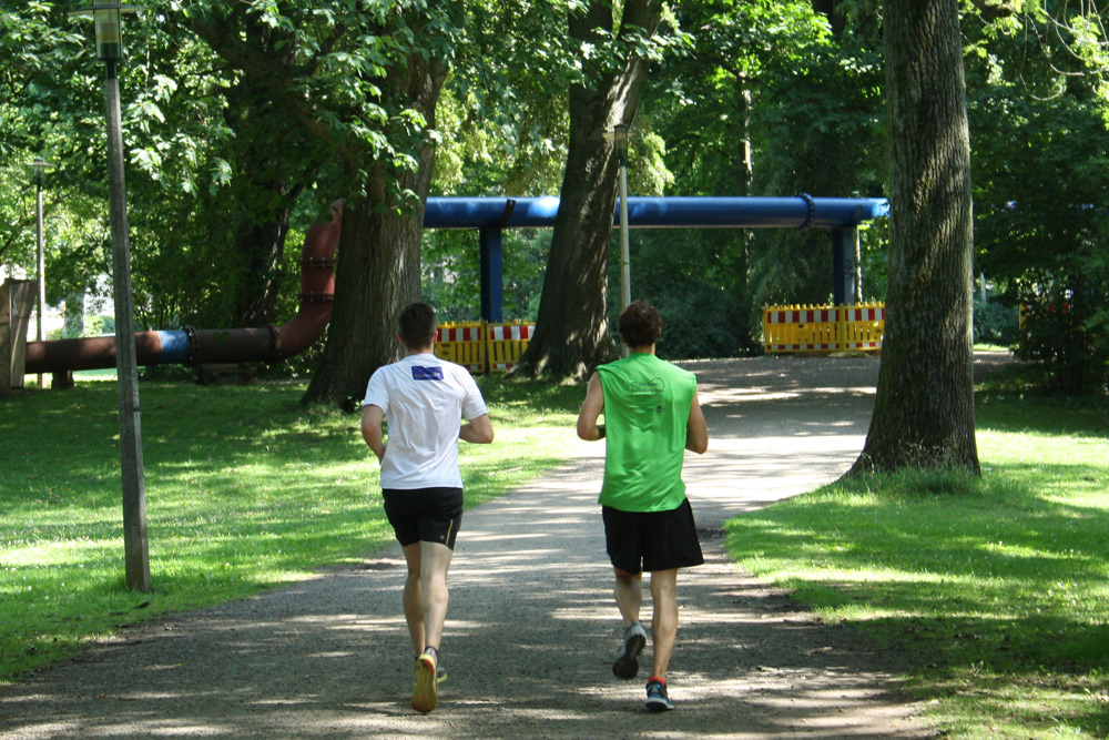 Läufer im Park. Foto: Ralf Julke