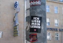Kleiner Denkanstoß ... Foto: Ralf Julke