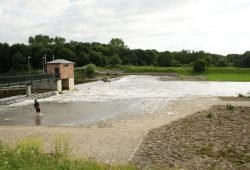 Noch fließt Wasser übers Rosentalwehr in die Neue Luppe. Foto: Ralf Julke
