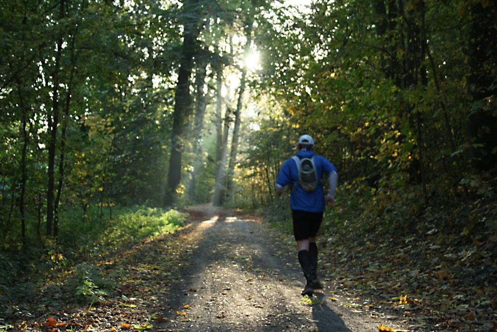 Jogger im Auenwald. Foto: Ralf Julke