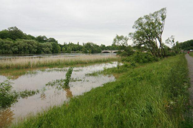 Hochwasser 2013 am unteren Elsterbecken. Foto: Marko Hofmann