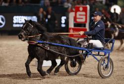Die Sparkassen Sport-Gala mit dem Reiterspiel bindet in jedem Jahr die Aktiven mit ein: Michael Withaker beim Shetty-Trabrennen bei der PARTNER PFERD 2017 Foto: Sportfotos-Lafrentz.de