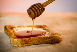 Hinter dem Honig-Frühstück stecken fleißige Bienen. Aber die sind hierzulande immer stärker bedroht, warnt die Agrar-Gewerkschaft IG BAU. Foto: IG BAU