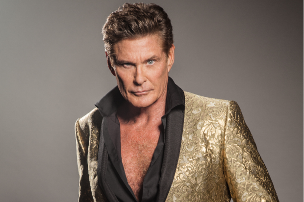 The Hoff Official Press Photo 2019
