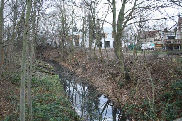 Die Alte Luppe mit den Bäumen des Sachsenforst und der direkt angrenzenden Bebauung. Foto: Ralf Julke