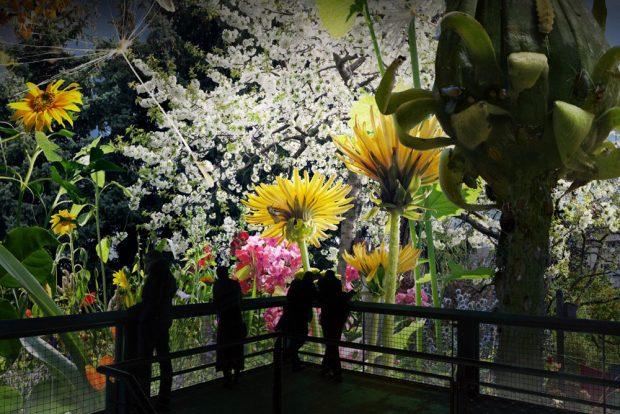"""Erste Visualisierung von """"Carolas Garten"""". Foto: Asisi"""