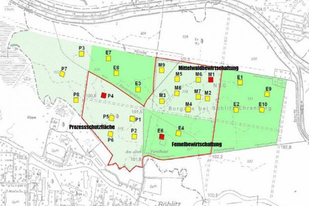Die drei verschiedenen Bewirtschaftungsarten in der Burgaue. Karte: Stadt Leipzig, Abschlussbericht des Prof. Hellriegel Instituts