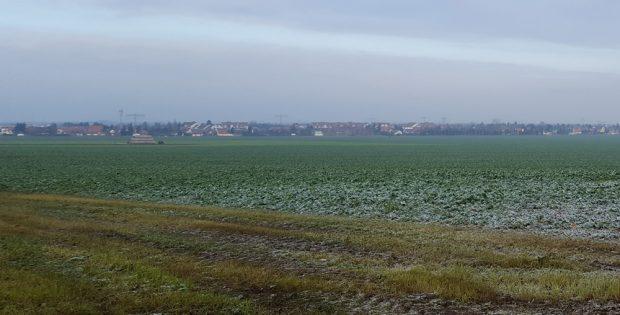 Feld bei Rückmarsdorf. Foto: Marko Hofmann