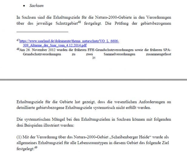 Kritikbeispiel Sachsen im Mahnschreiben der EU-Kommission. Screenshot: L-IZ