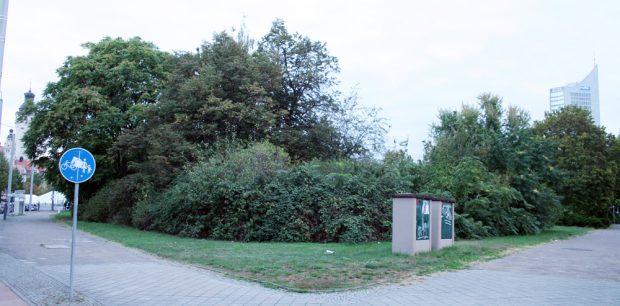 Jetzt noch ein Rückzugsort für Nistvögel:_die Brache zwischen Windmühlenstraße und Brüderstraße. Foto: Ralf Julke