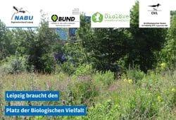 Der Wilhelm-Leuschner-Platz ist Lebensraum für Tiere, Pflanzen und Menschen, ein Platz der Biologischen Vielfalt. Foto: Beatrice Jeschke