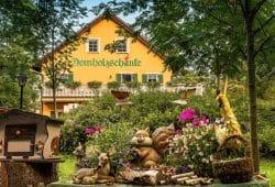 Die Domholzschänke mitten im Auenwald. Foto: Daniel Reiche