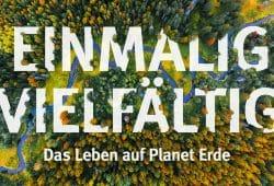 Leider noch kein Buch: Biodiversität und das Forschungszentrum iDiv stehen im Fokus des Unibundforums 2019. Foto: Stefan Bernhardt, iDiv