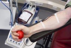 Auch regelmäßiges Blutspenden kann sich förderlich auf das Herzkreislaufsystem auswirken. Foto: Stefan Straube / UKL