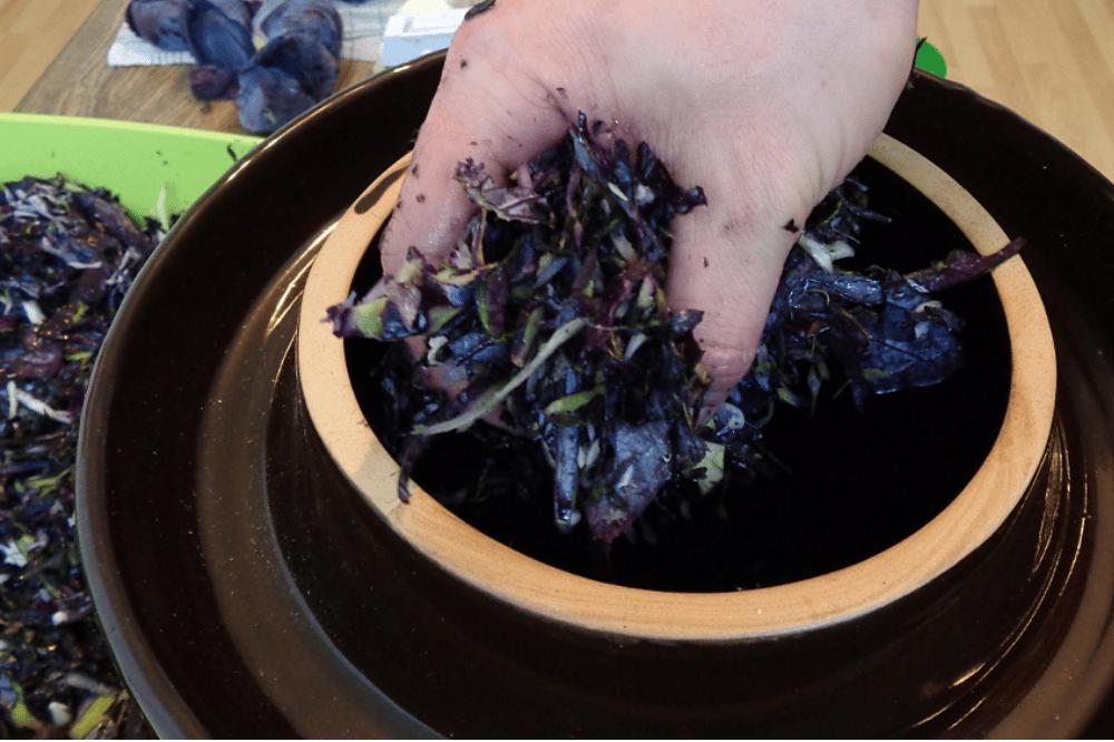 Sauerkraut machen. Foto: erleb-bar