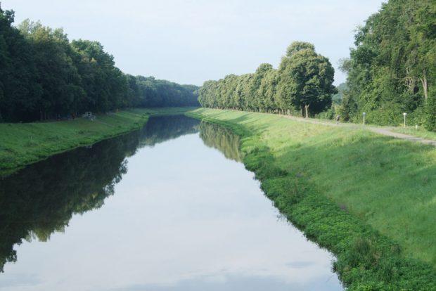Der links zu sehende Deich am Elsterflutbett wird jetzt entwidmet. Foto: Ralf Julke