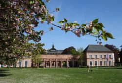 Der Grassi-Museumskomplex. Foto: Ralf Julke