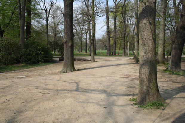 Blick Richtung Norden: Der Weg verliert sich in einer riesigen graslosen Fläche. Foto: Ralf Julke