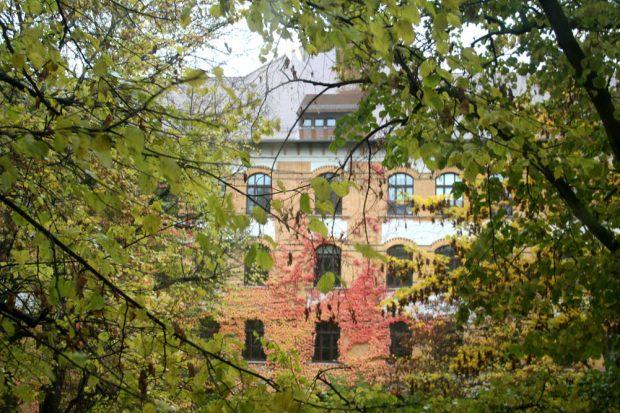 Blick vom Haus der Demokratie zur Apollonia-von-Wiedebach-Schule. Foto: Ralf Julke
