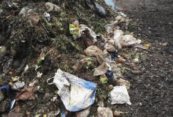 Fremdstoffe im Bioabfall. Quelle: Stadtreinigung Leipzig