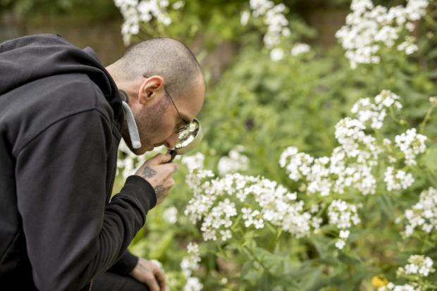 Mark Benecke setzt sich für den Insektensommer ein © Tomas Rodriguez/NABU