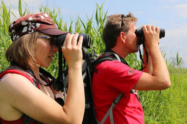 Vogelbeobachtung - Foto: NABU/Iris Barthel
