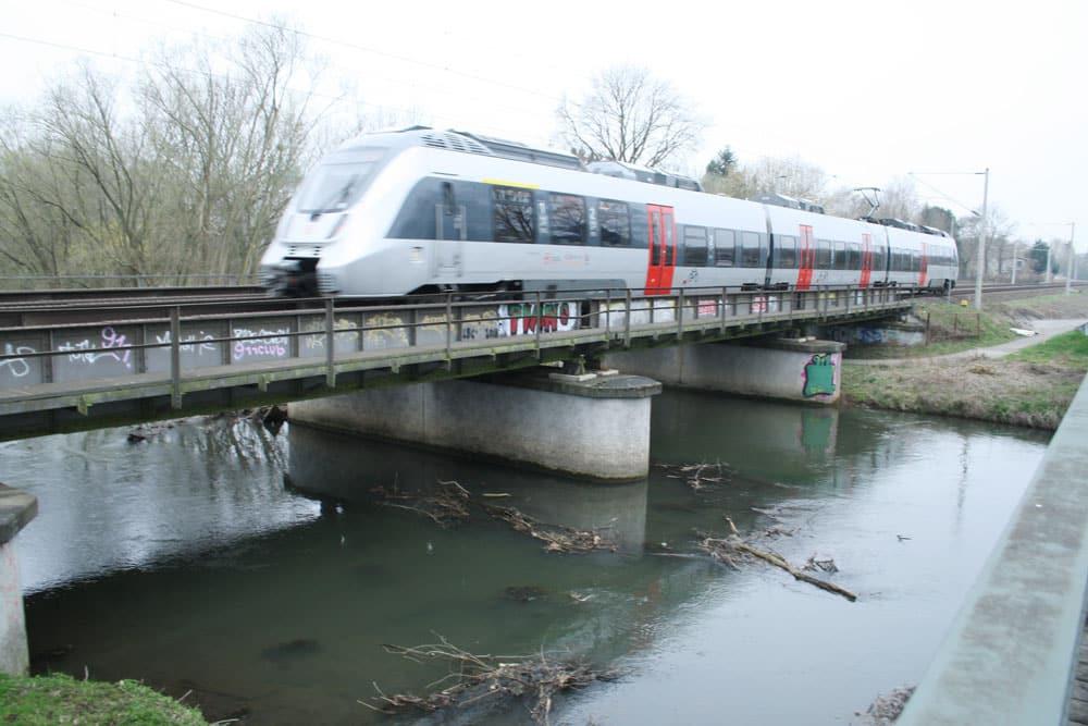 S-Bahn auf der Brücke über die Weiße Elster. Foto: Ralf Julke