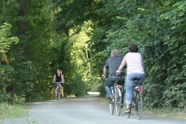 Radfahrer im südlichen Auenwald. Foto: Ralf Julke
