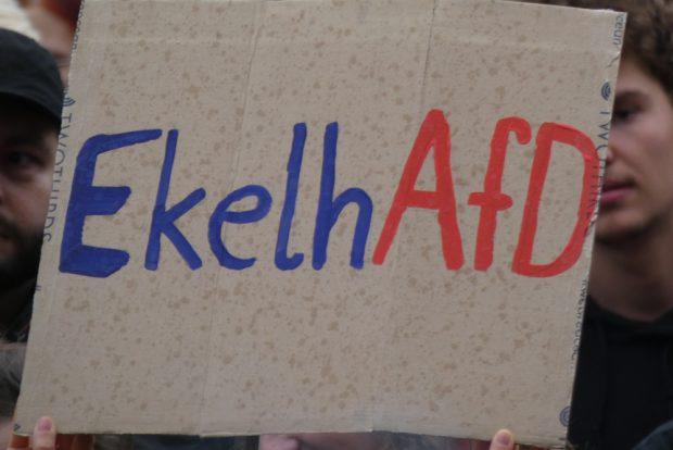 In Görlitz war die AfD das erklärte Feindbild. Archivfoto: L-IZ.de