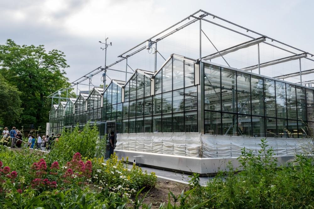 Das neue iDiV-Forschungsgewächshaus im Botanischen Garten. Foto: iDiV, Stefan Bernhardt