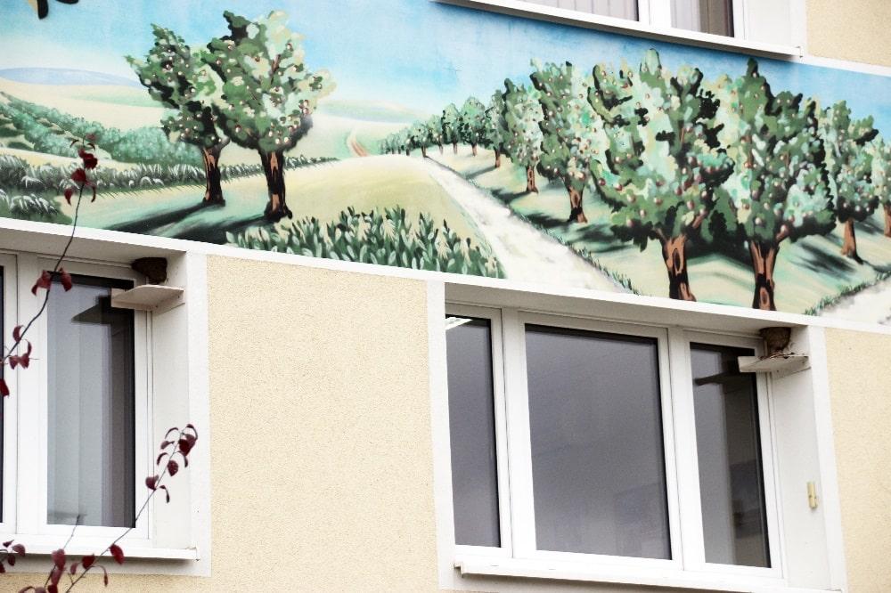 Zwei Schwalbennester am Sachsenobst-Verwaltungsgebäude in Dürrweitzschen. Foto: Philipp Steuer/NABU Sachsen