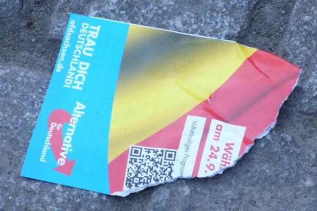 Plakat der AfD zur Bundestagswahl 2017. Foto: L-IZ.de