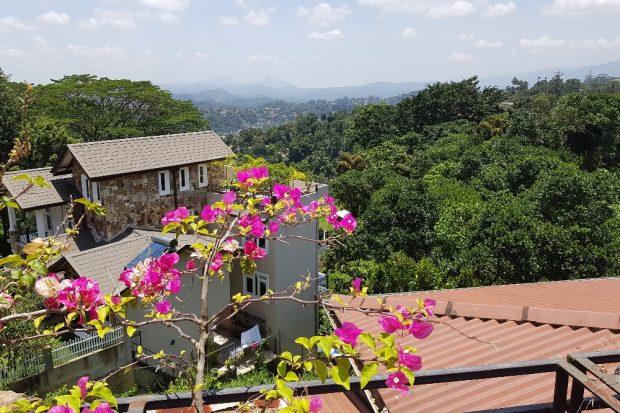 Das Landesinnere Sri Lankas entsprach endlich dem, was wir suchten. Foto: Sascha Bethe