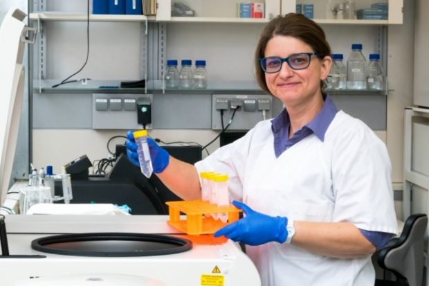 Dr. Peggy Stock bei ihrer Arbeit im Labor. Foto: Universität Leipzig