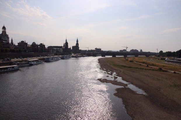 Die Elbe am 1. Julli 2019. Foto: Michael Freitag