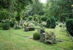 Südfriedhof Leipzig. Foto: Ralf Julke