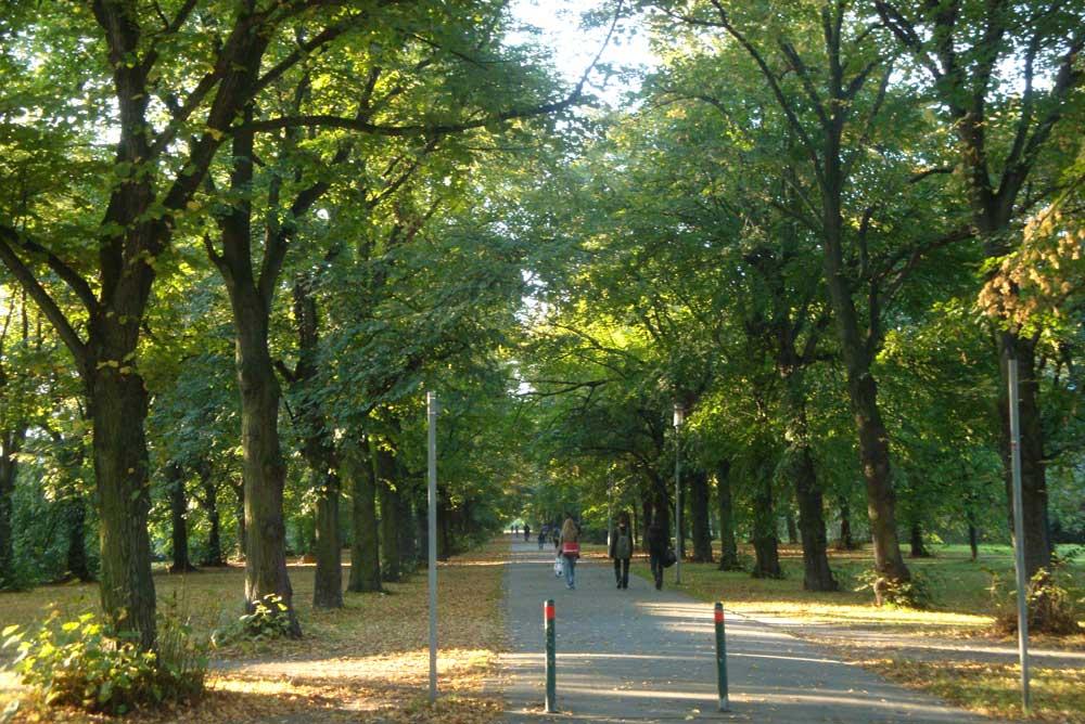 Die Parkallee gegenüber des Schönauer Parks. Archivfoto: Gernot Borriss