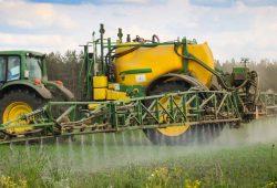 Der Einsatz von Pestiziden in der Landwirtschaft schadet der Umwelt und vielen Tieren wie Insekten und Vögeln. Foto: Ina Ebert