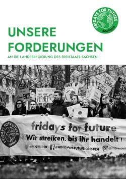 Fridays for Future veröffentlichen ihre Forderungen zur Landtagswahl Sachsen. Screen: FFF