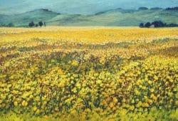 Sommer in der Provence. Quelle: Commerzbank AG