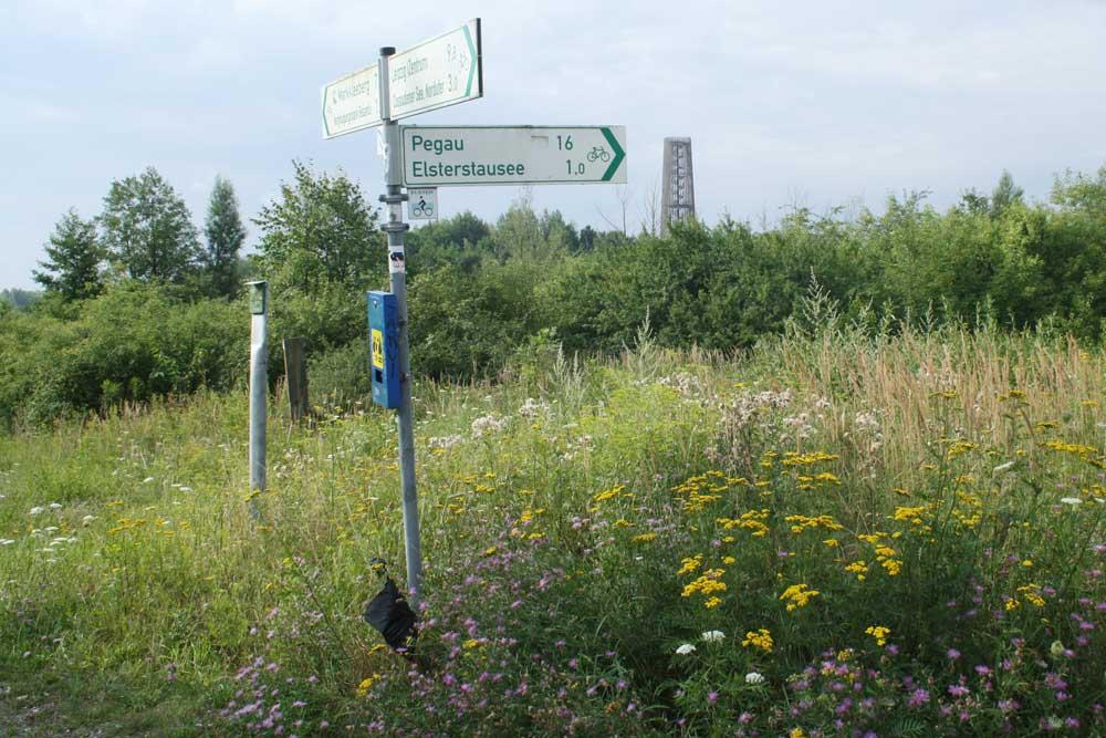 Alte Radwegbeschilderung an der Bistumshöhe. Foto: Ralf Julke