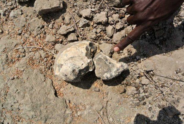 Das Fossil wurde 2016 in Miro Dora im Bezirk Mille des Äthiopischen Regionalstaats Afar gefunden. Foto: Yohannes Haile-Selassie, Cleveland Museum of Natural History