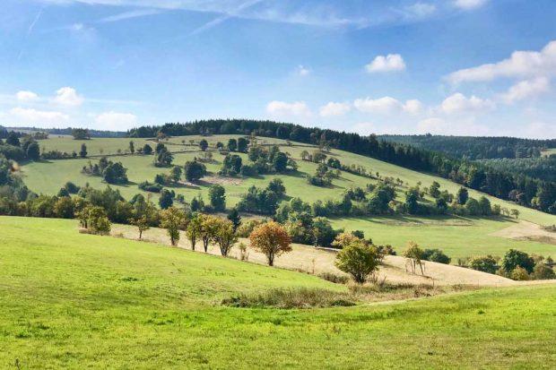 Eine strukturreiche Landschaft im Erzgebirge. Die EU-Landwirtschaftspolitik bestimmt die Entwicklung solcher ländlichen Räume. Foto: Sebastian Lakner