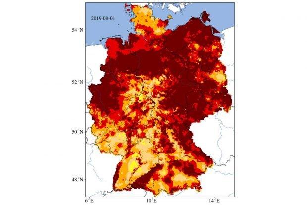 Dürre im August 2019. Karte: UFZ, Dürremonitor