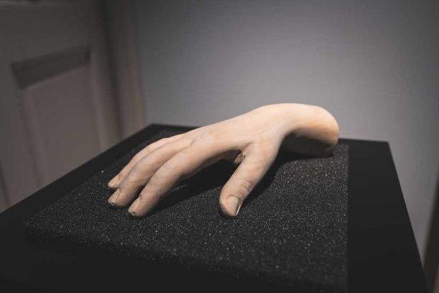 Installation von Érwin Stache: Claras Hand. Foto: Christian Kern